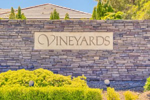 The Vinyards