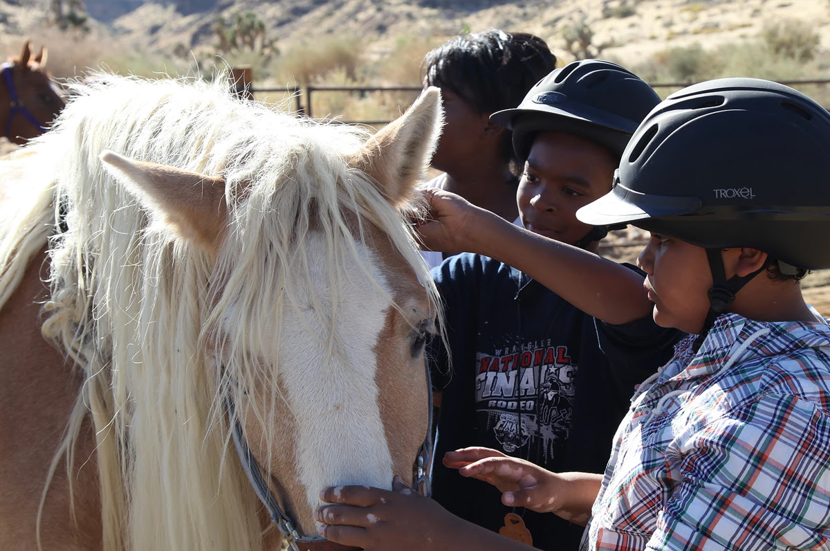 White Horse Youth Ranch for helping children